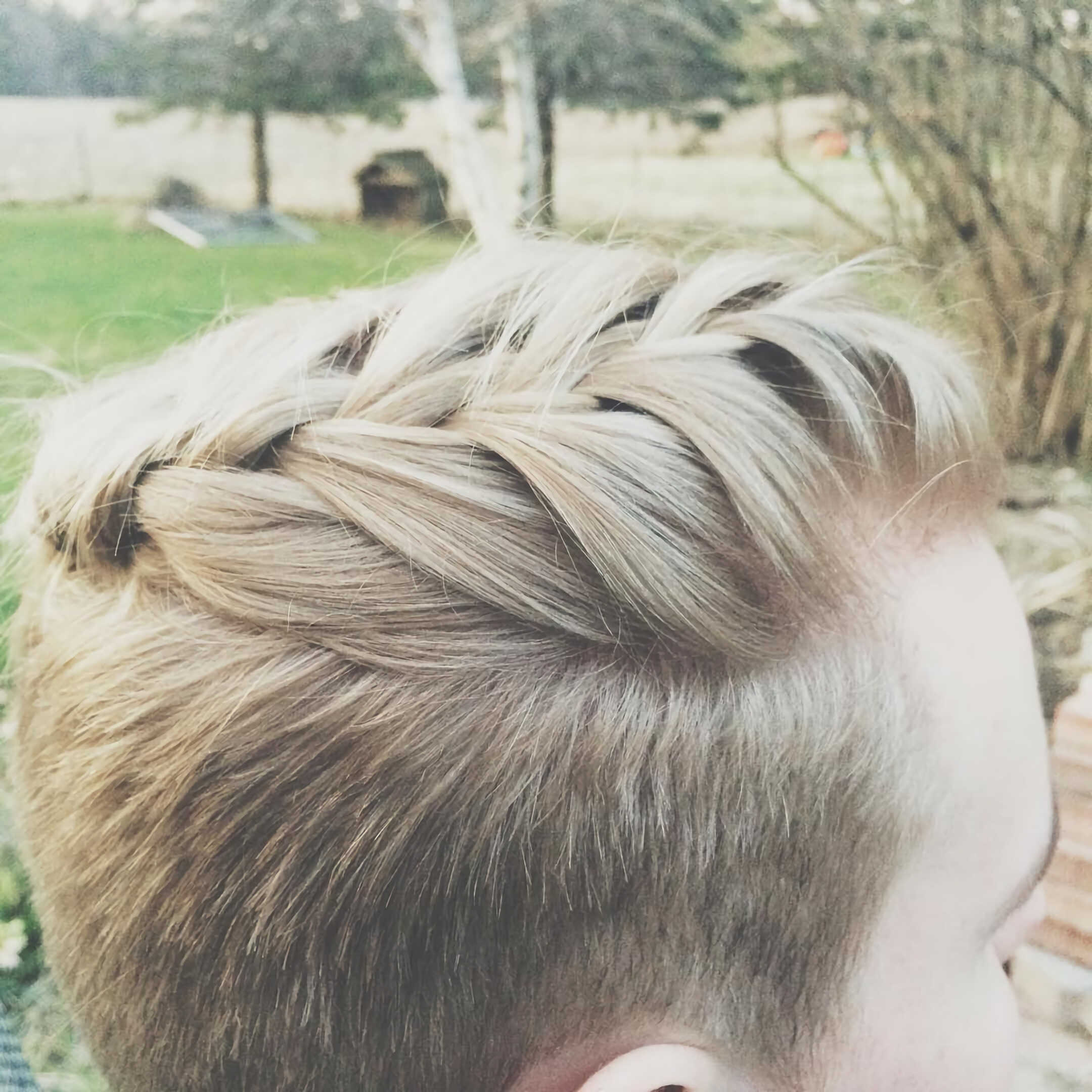 Fade with Braided Pompadour